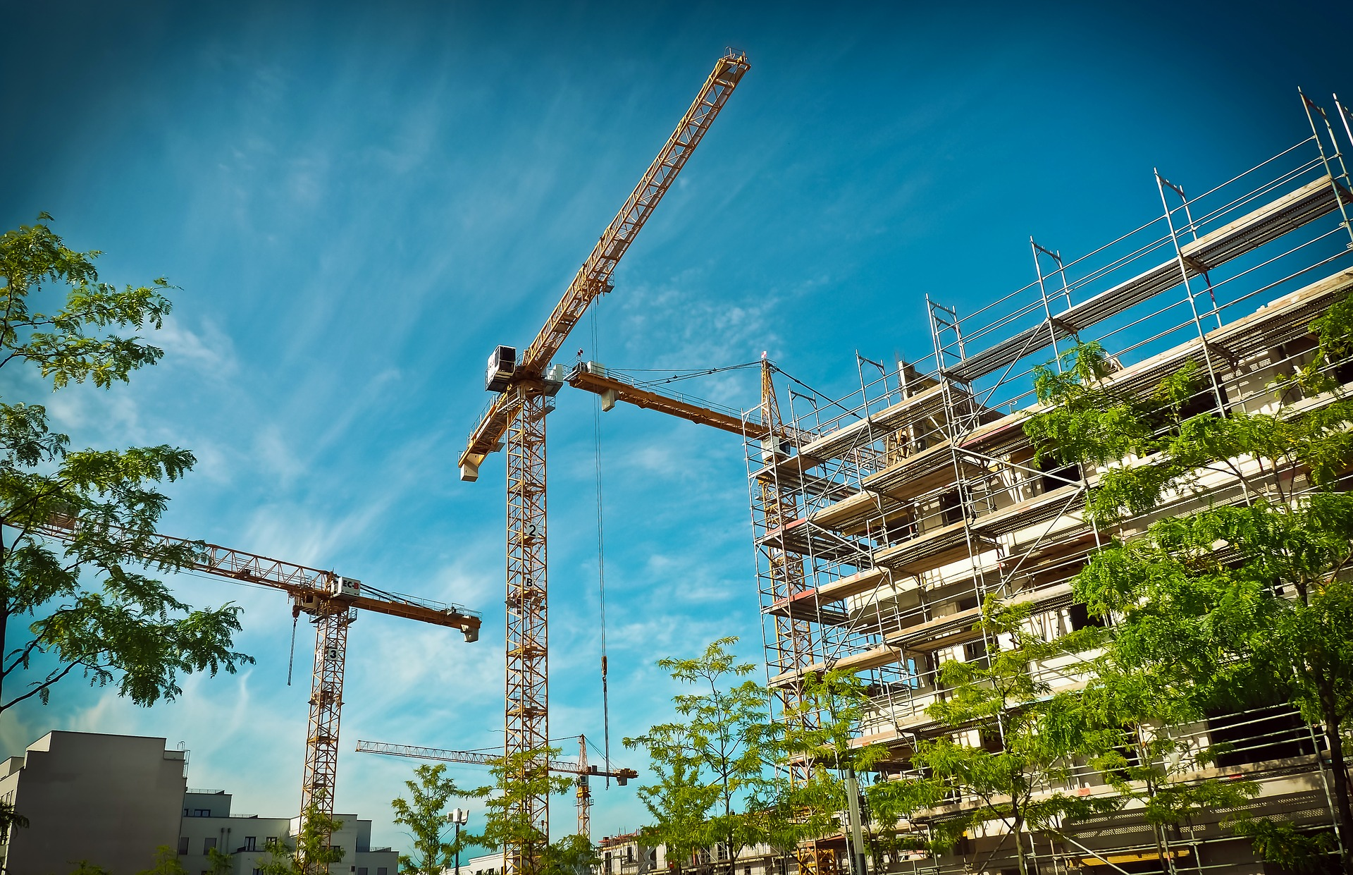 const-scaffolding
