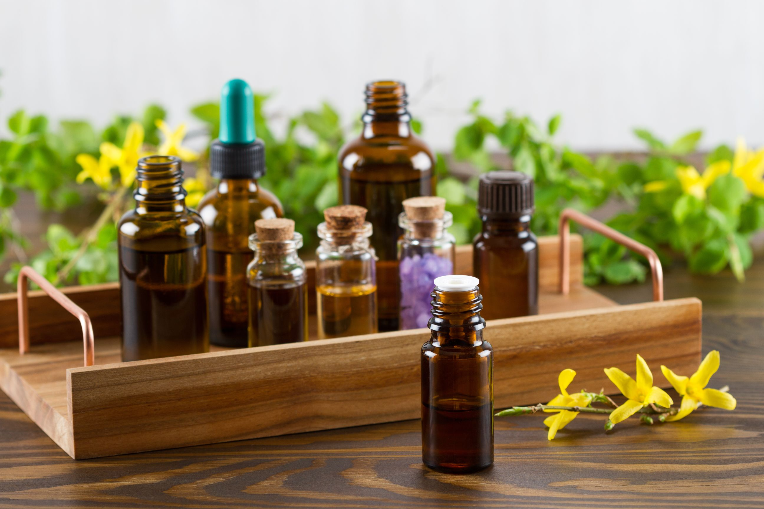 Aromatherapy & Essential Oils