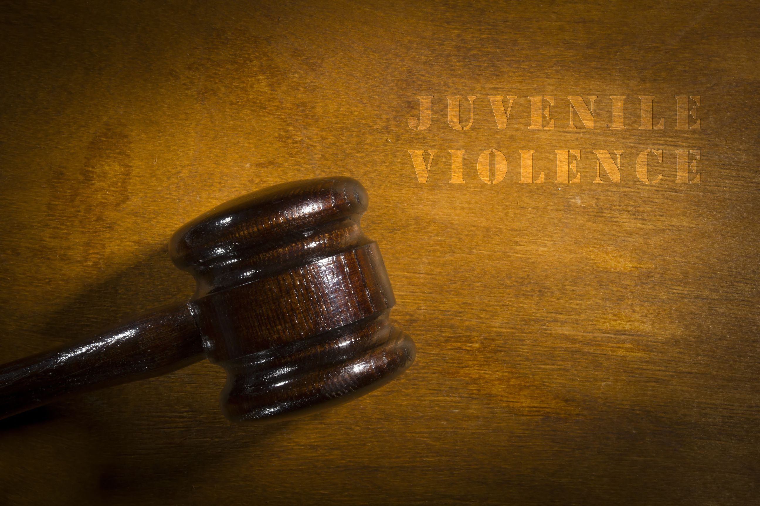 Attorneys & Lawyers - Juvenile
