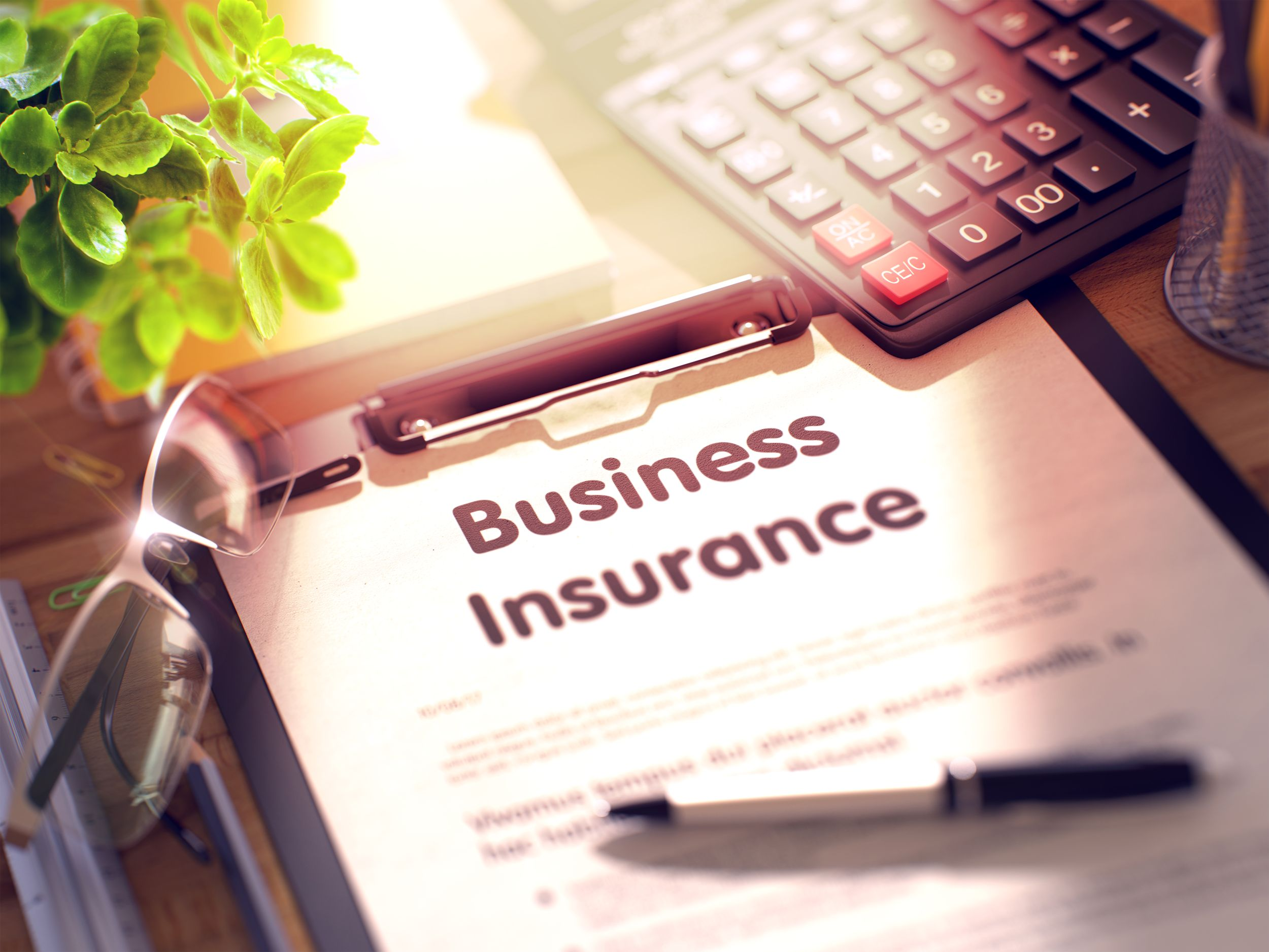 Insurance - Business