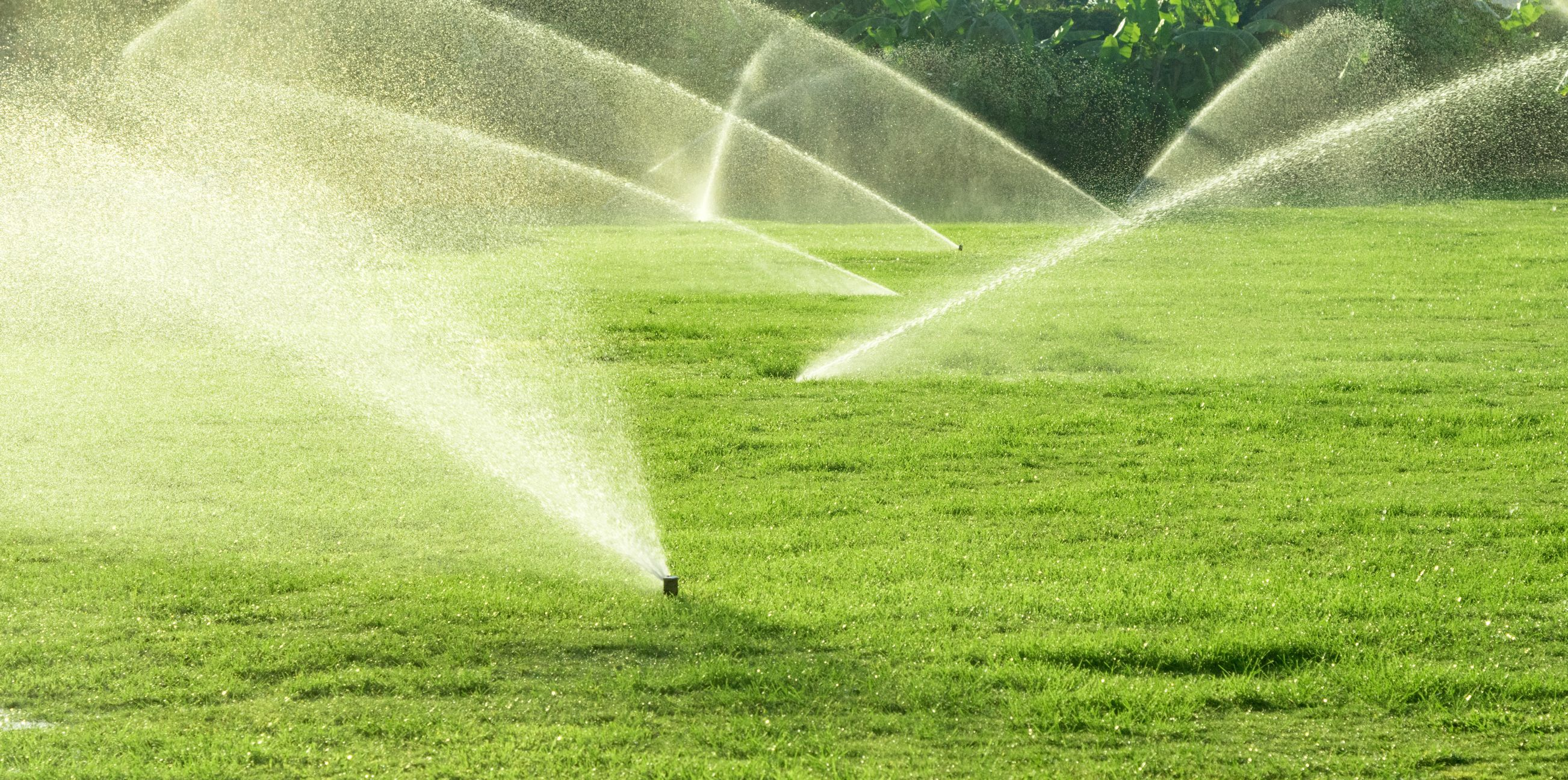 Best Sprinkler Systems To Install Smartguy