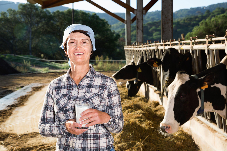 Livestock Buyers