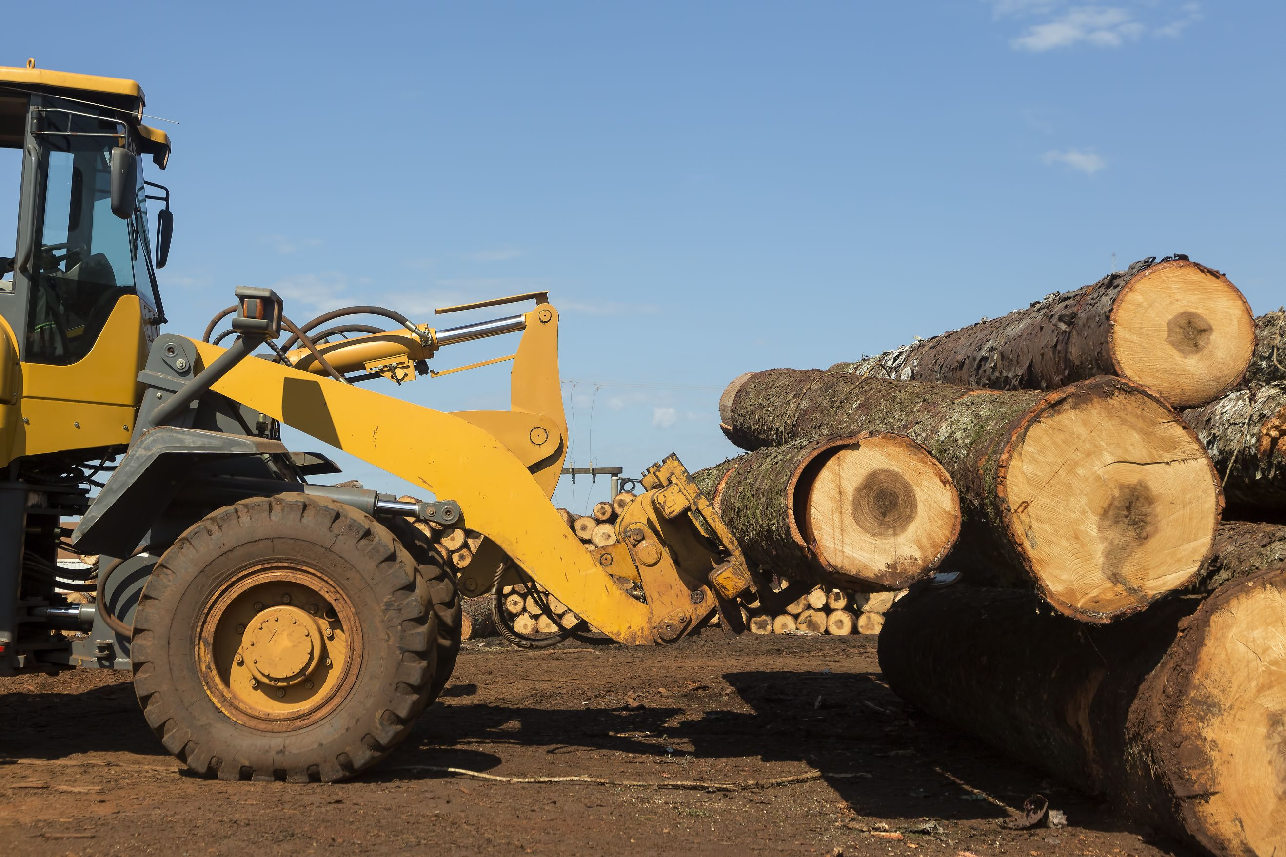 Logging Equipment & Supplies