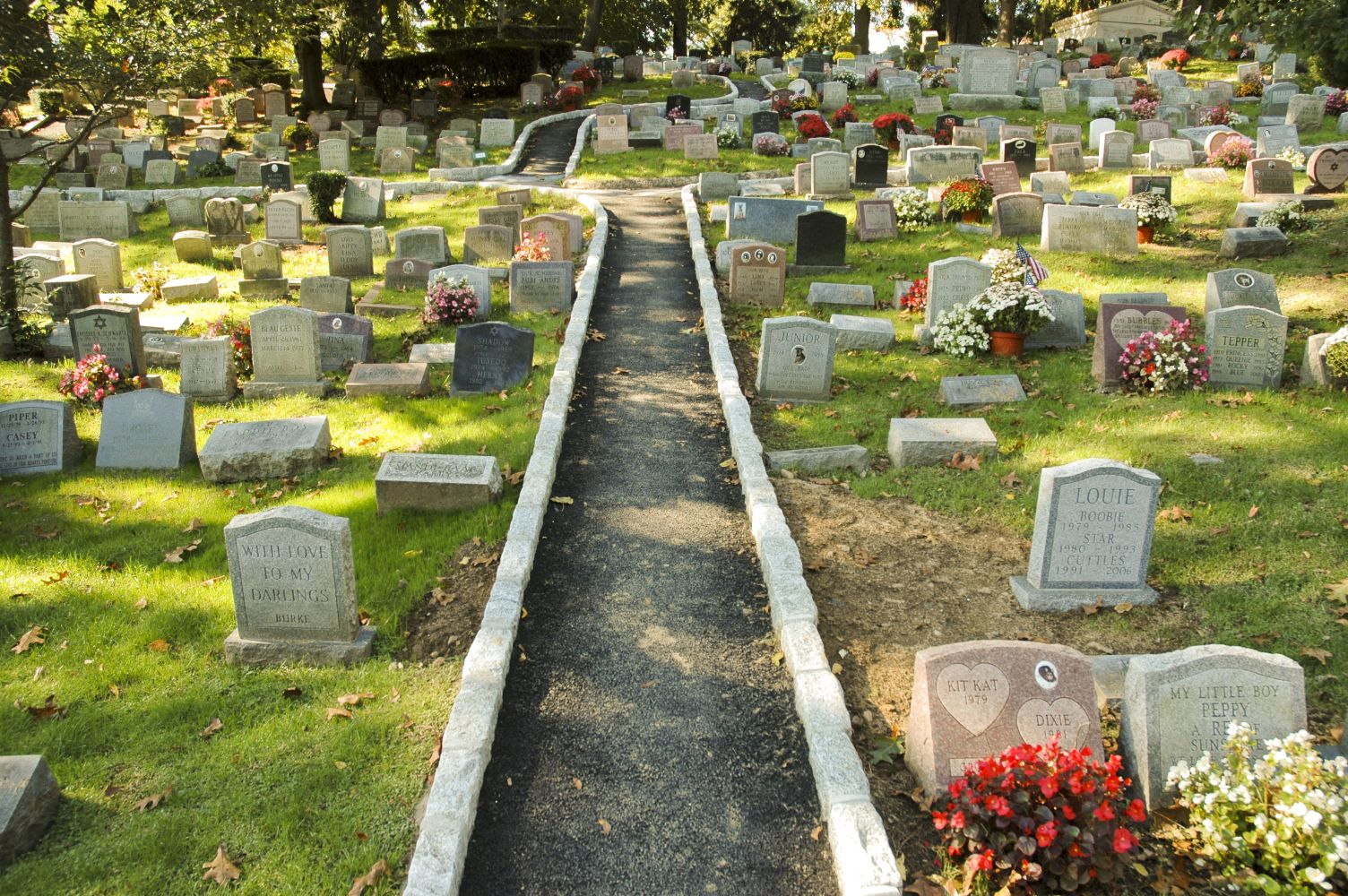 Pet Cemeteries, Crematories & Supplies