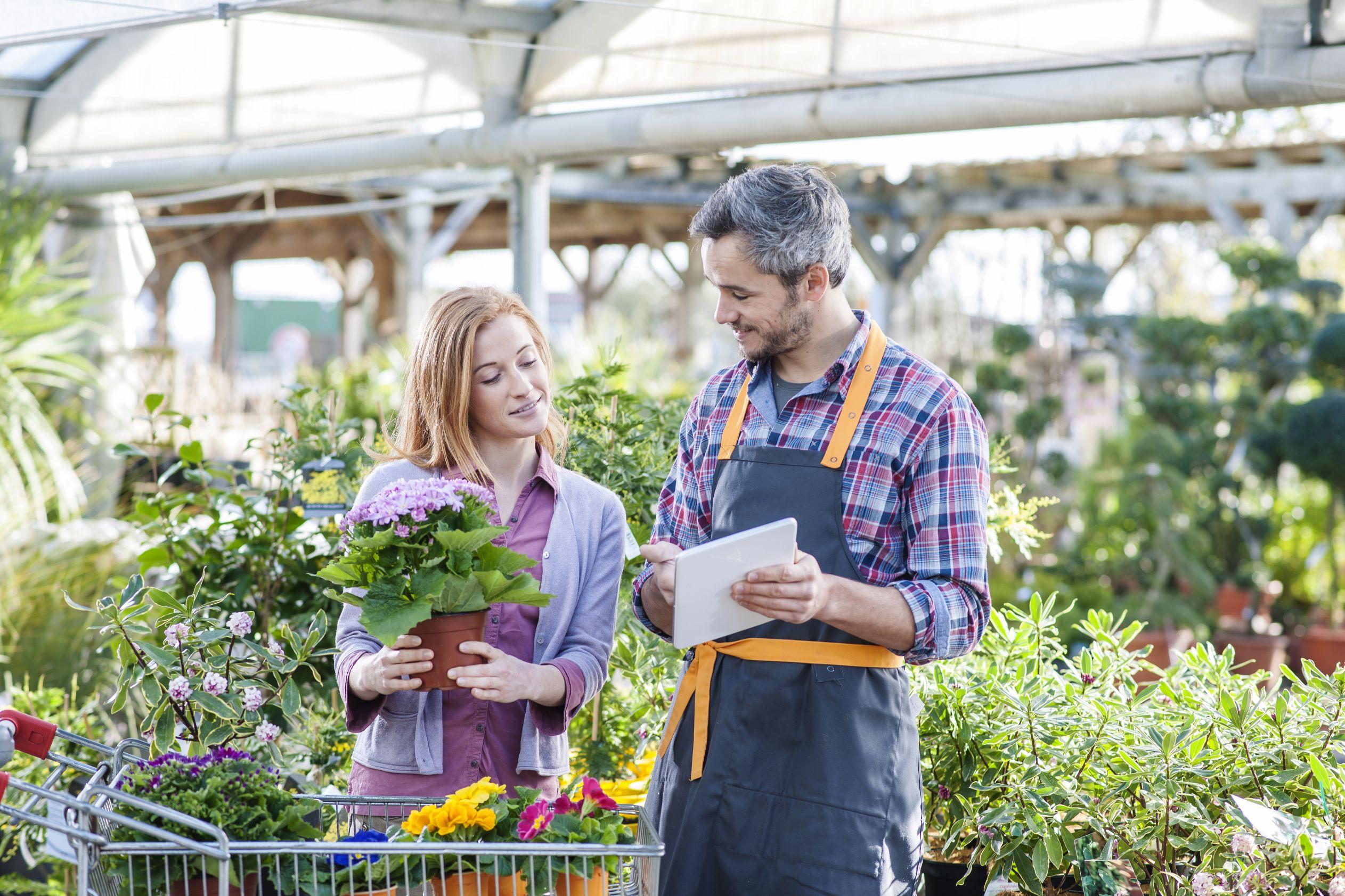 Plants - Retail