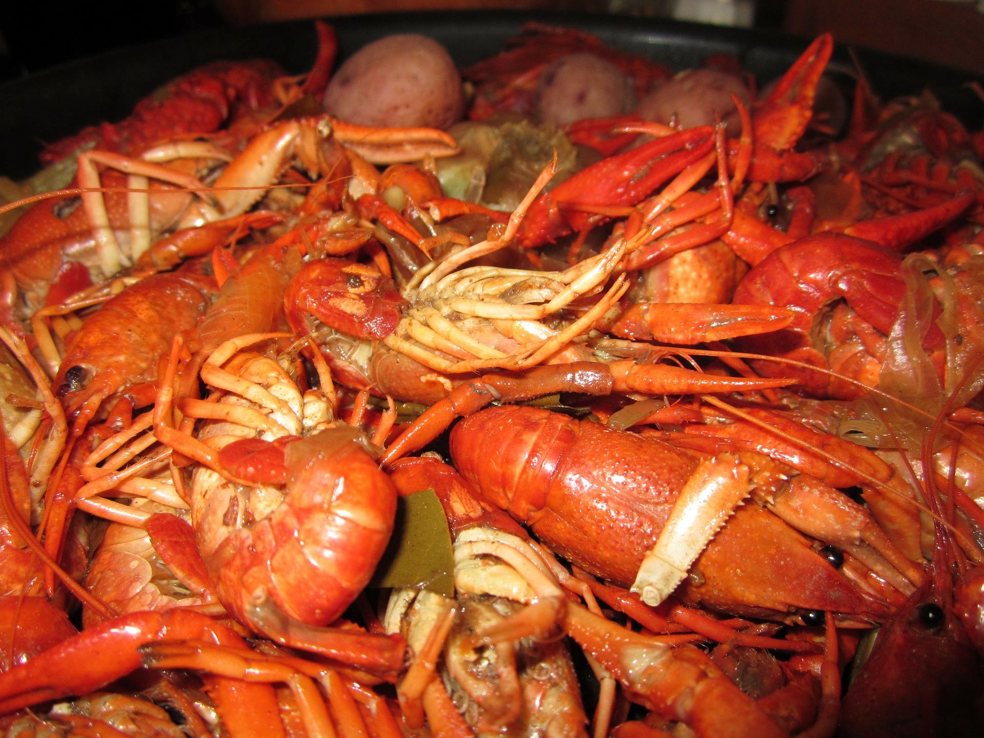 restaurant-cajun-creole