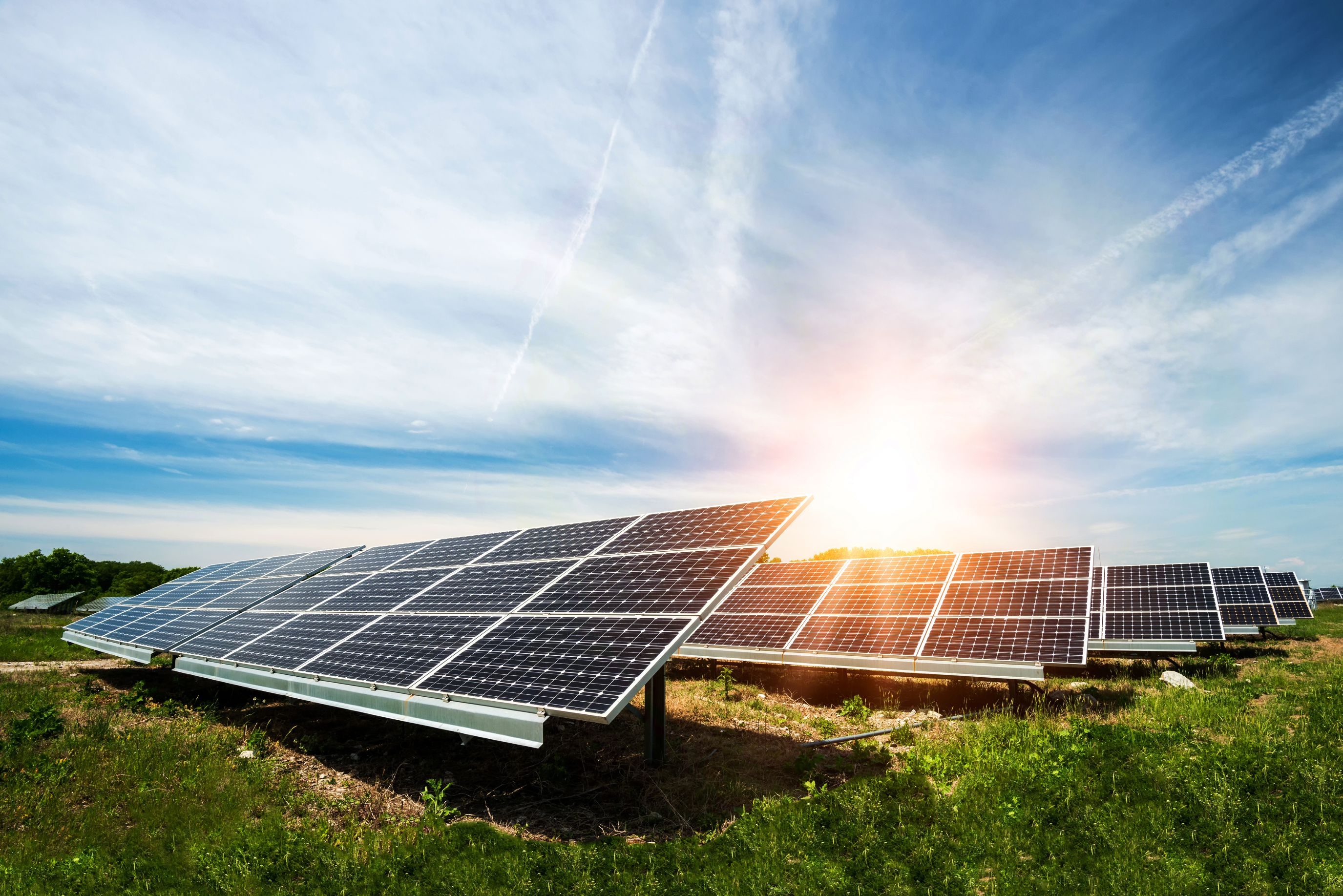 Find the Best Solar Power Companies Local Solar energy providers | SmartGuy