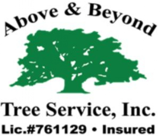 above-beyond-tree-service-woodland-hills