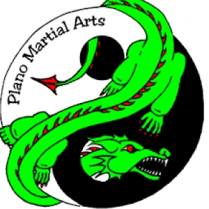 best-martial-arts-plano-tx-usa