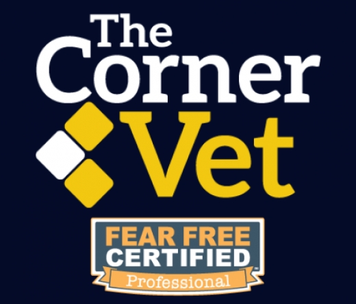 best-veterinarians-houston-tx-usa