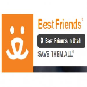 best-animal-rescue-springville-ut-usa