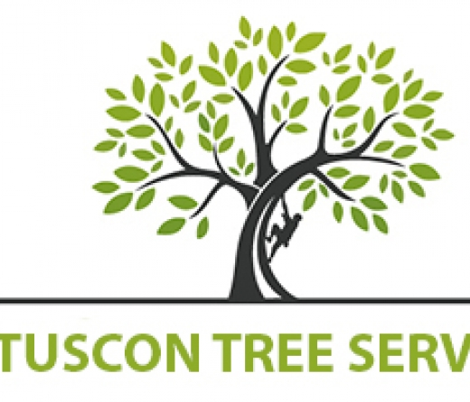tucson-tree-services