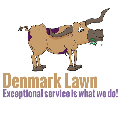 best-lawn-maintenance-fort-worth-tx-usa