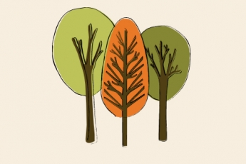 best-tree-service-omaha-ne-usa
