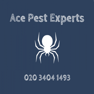 ace-pest-experts