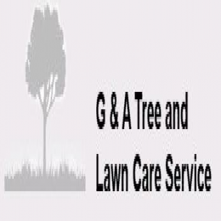 best-tree-service-cincinnati-oh-usa