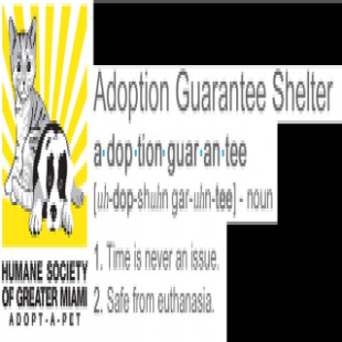 humane-society-of-greater-miami-south