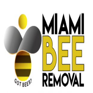 miami-bee-removal-corp