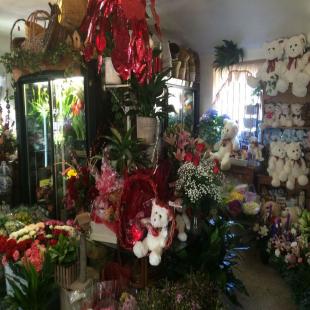 cuts-creative-florist