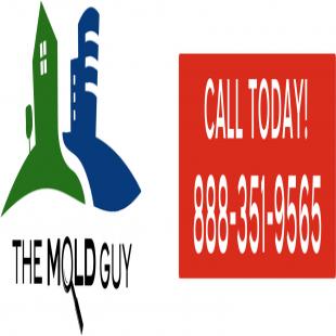 the-mold-guy-inc