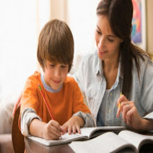 best-tutor-primary-grades-beverly-hills-ca-usa
