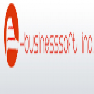 e-businesssoft-inc