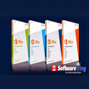 software-king
