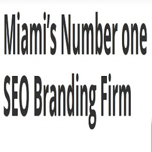 miamis-number-one-seo-branding-firm