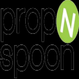 prop-n-spoon