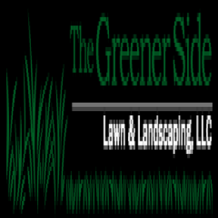 best-lawn-maintenance-alexandria-va-usa