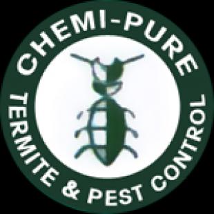 best-termite-control-honolulu-hi-usa