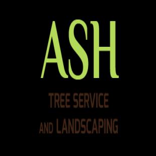 best-tree-service-elgin-il-usa