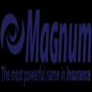 best-insurance-companies-elgin-il-usa