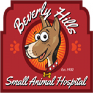 best-veterinarians-beverly-hills-ca-usa