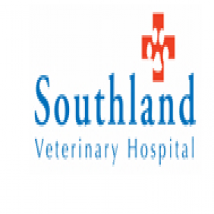 best-veterinarians-lexington-ky-usa