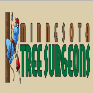best-arborist-minneapolis-mn-usa