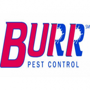 best-pest-control-rockford-il-usa