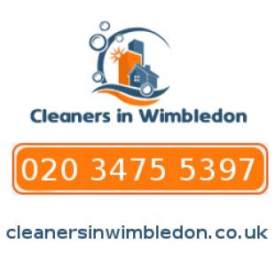 cleaner-wimbledon-FER