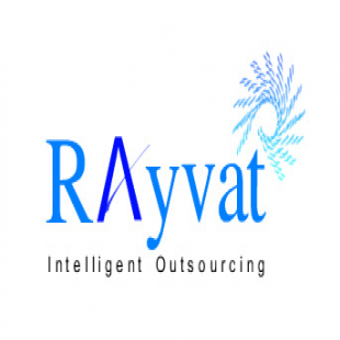rayvat-accounting