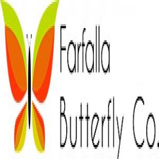 farfalla-butterfly-co