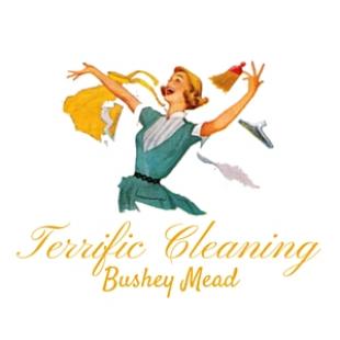 terrific-cleaning-bushey-mead