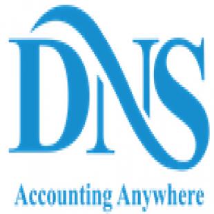 dns-accountants