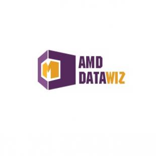 amd-datawiz
