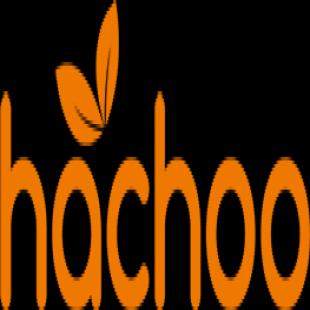 hachoo-bubble-tea-canada
