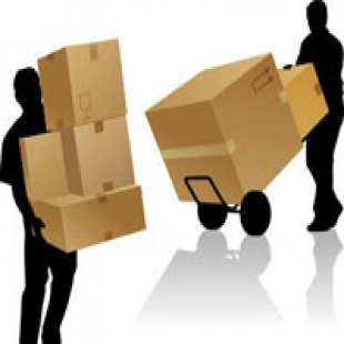 professional-miami-movers