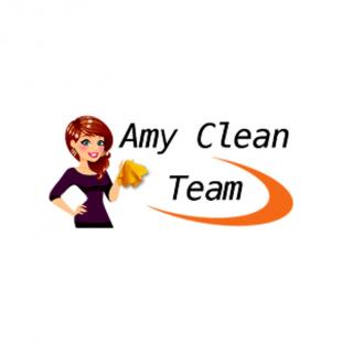 amy-clean-team