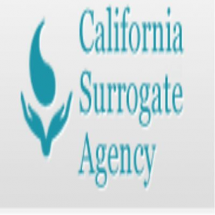 californiasurrogateagecy