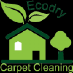 ecodry-carpet-cleaning-ny