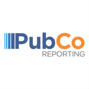 pubco-reporting-solutions