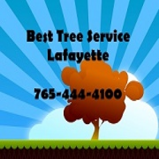 best-tree-service-lafayet